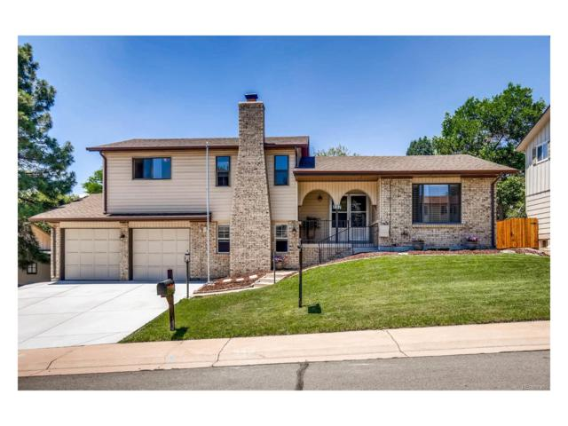 857 S Nelson Street, Lakewood, CO 80226 (#8734002) :: The City and Mountains Group