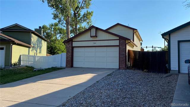 709 Walden Court, Highlands Ranch, CO 80126 (MLS #8736442) :: 8z Real Estate