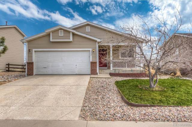 7752 Brown Bear Way, Littleton, CO 80125 (#8741042) :: The HomeSmiths Team - Keller Williams