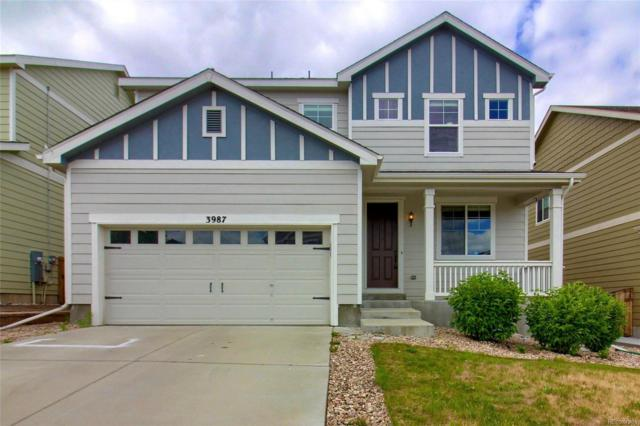 3987 Starry Night Loop, Castle Rock, CO 80109 (#8741790) :: The HomeSmiths Team - Keller Williams