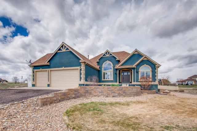 30163 E 165th Avenue, Brighton, CO 80603 (#8742814) :: Wisdom Real Estate