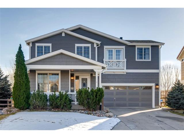 3975 Brushwood Way, Castle Rock, CO 80109 (#8742856) :: RE/MAX Professionals