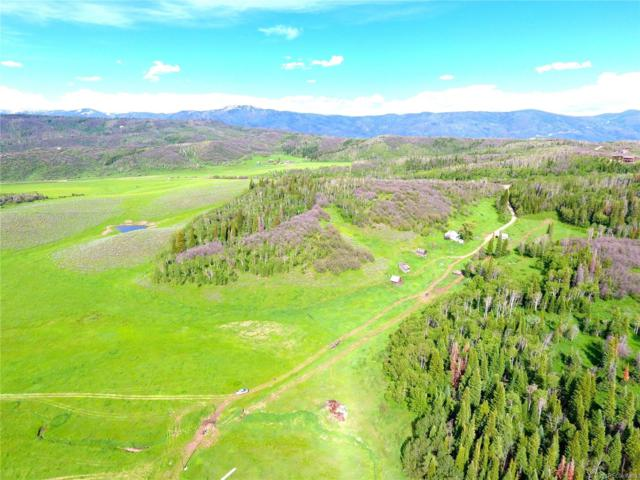 33545 County Road 41, Steamboat Springs, CO 80487 (#8743560) :: The Healey Group