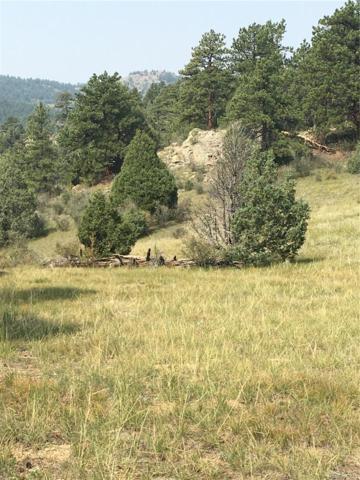 10 (TBD) Turret Trail, Pine, CO 80470 (#8745853) :: Hometrackr Denver