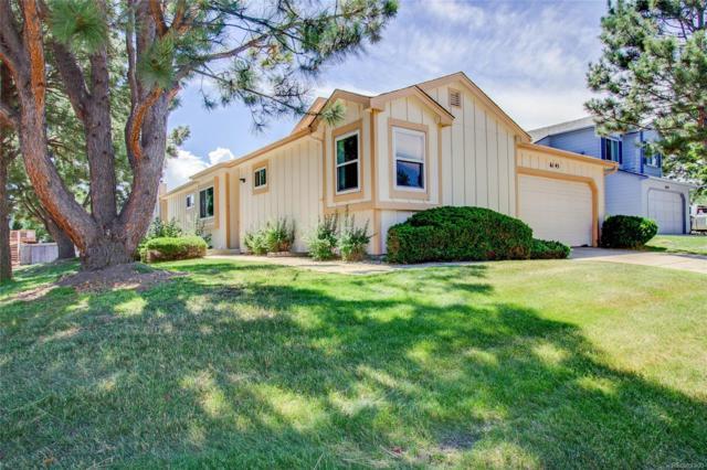 6145 Hayseed Court, Colorado Springs, CO 80922 (MLS #8747257) :: 8z Real Estate