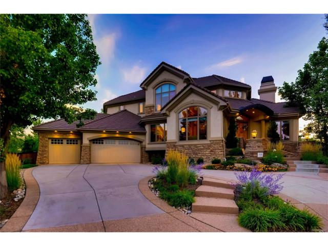 9340 E Star Hill Trail, Lone Tree, CO 80124 (#8748923) :: The Peak Properties Group