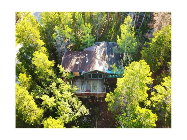 52 Black Bear Trail, Golden, CO 80403 (#8751393) :: The Peak Properties Group
