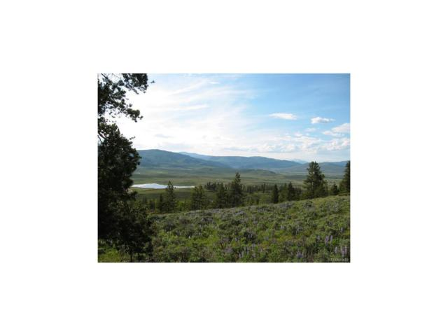 1464 County Road 8952, Granby, CO 80446 (MLS #8752794) :: 8z Real Estate
