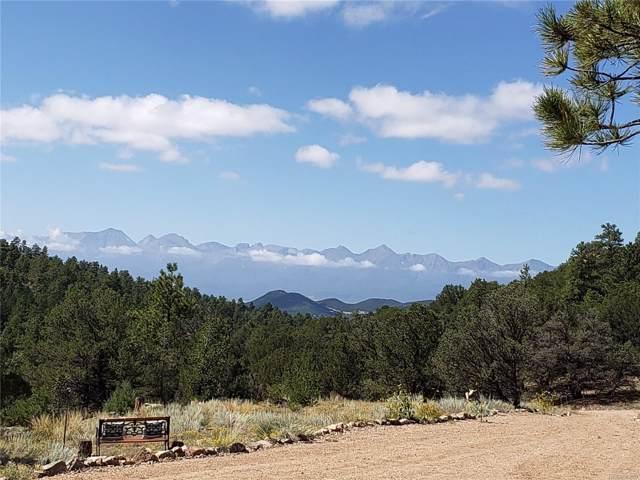 175 Bella Vista Trail, Westcliffe, CO 81252 (#8755171) :: Bring Home Denver with Keller Williams Downtown Realty LLC