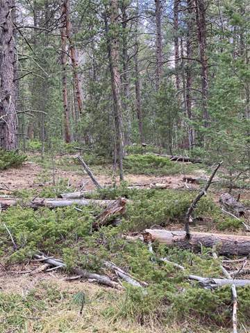 Lot 9X TBD Wallace Avenue, Conifer, CO 80433 (#8755848) :: The DeGrood Team