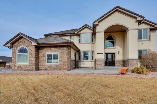 24621 Green Drive, Brighton, CO 80603 (#8755937) :: HomePopper