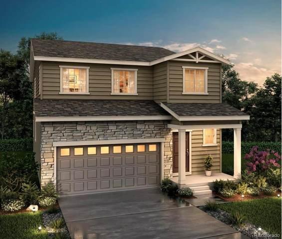 5341 Villageview Lane, Castle Rock, CO 80104 (#8756022) :: The Healey Group