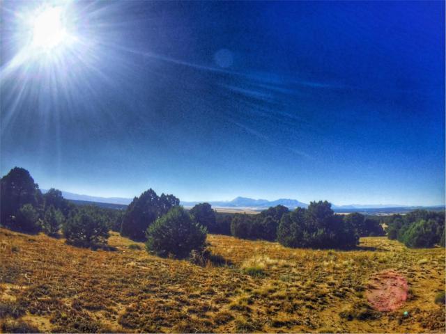Lot 75A Phase 3 River Ridge Ranch, La Veta, CO 81055 (MLS #8756412) :: 8z Real Estate