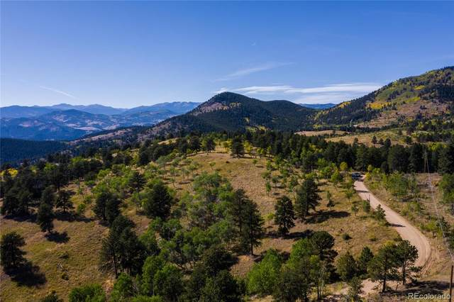 Robinson Hill, Lot 3, Black Hawk, CO 80403 (MLS #8756864) :: Bliss Realty Group