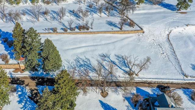 Glenway Street, Palmer Lake, CO 80133 (#8758797) :: Re/Max Structure
