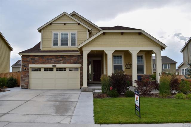 14032 Grape Street, Thornton, CO 80602 (MLS #8762196) :: Bliss Realty Group