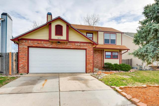 5859 S Jebel Way, Centennial, CO 80015 (#8763769) :: The Pete Cook Home Group