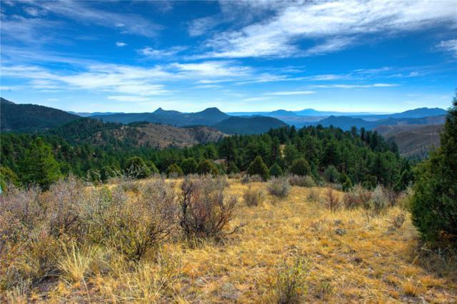 32165 Half Peak Trail, Pine, CO 80470 (#8765464) :: 5281 Exclusive Homes Realty