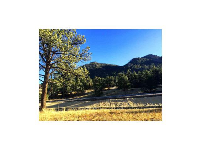 2605 Fish Creek Road, Estes Park, CO 80517 (MLS #8767432) :: 8z Real Estate