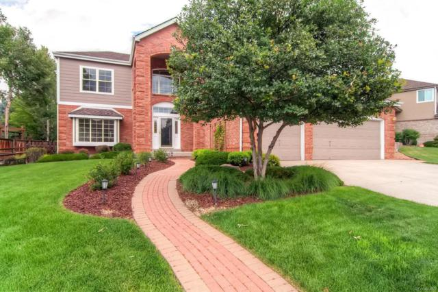 10072 Cottoncreek Drive, Highlands Ranch, CO 80130 (#8771383) :: The Peak Properties Group