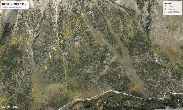 000 Hattie Brenton Mc, Buena Vista, CO 81211 (#8772206) :: The DeGrood Team