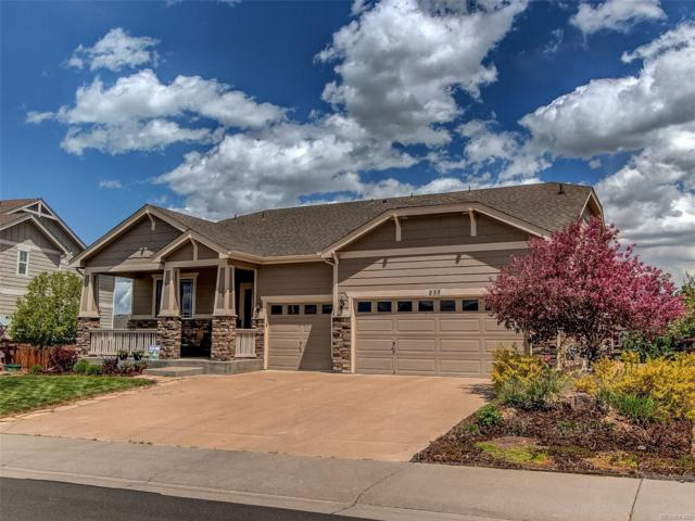 255 Crosshaven Place, Castle Rock, CO 80104 (#8772863) :: The Peak Properties Group