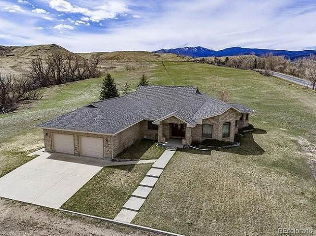 5392 Nelson Road, Longmont, CO 80503 (#8774051) :: The Healey Group