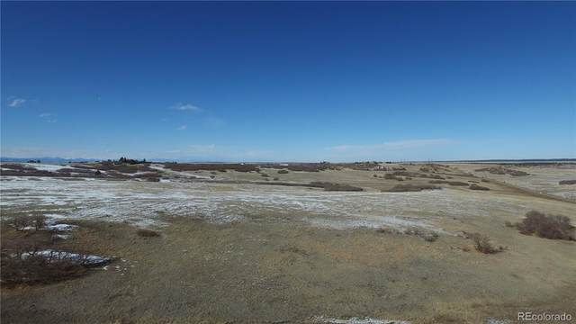 6410 Lake Gulch Road, Castle Rock, CO 80104 (#8774661) :: Colorado Home Finder Realty