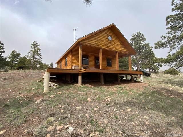 290 Kline Lane, Fort Garland, CO 81133 (#8778861) :: The Colorado Foothills Team | Berkshire Hathaway Elevated Living Real Estate
