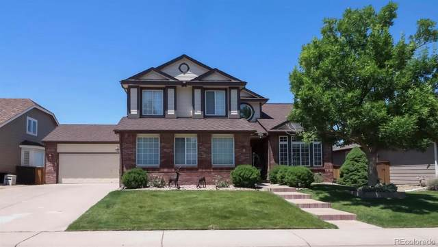 9321 Mountain Brush Street, Highlands Ranch, CO 80130 (#8781486) :: Portenga Properties