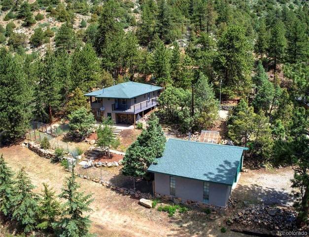 110 Mountain Street, Dumont, CO 80436 (MLS #8782577) :: 8z Real Estate