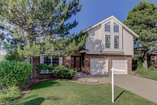 8049 S Sunlight Peak, Littleton, CO 80127 (#8785184) :: The Pete Cook Home Group