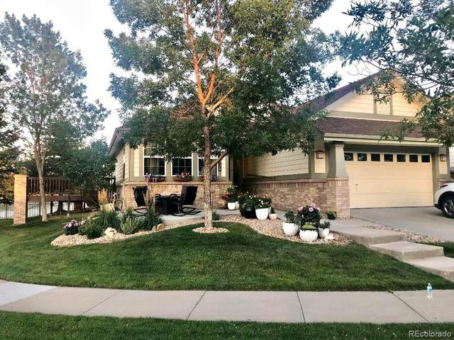 7738 S Zante Court, Aurora, CO 80016 (MLS #8785879) :: Kittle Real Estate