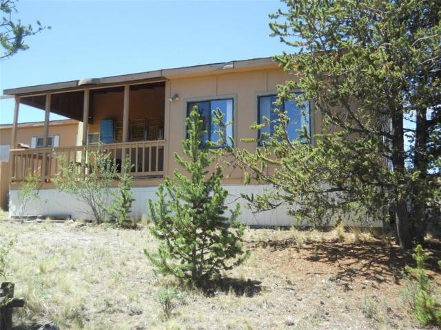 104 Misfire Way, Como, CO 80432 (#8785997) :: Structure CO Group