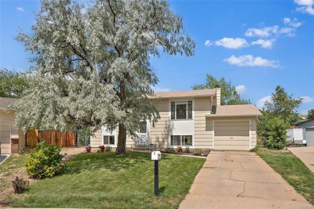 1137 S Owens Court, Lakewood, CO 80232 (#8787715) :: The Peak Properties Group