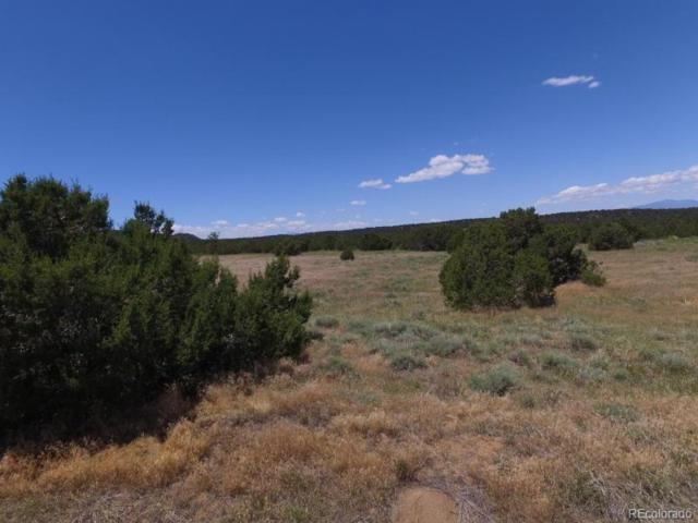 Lot 162 Legend Lane, Walsenburg, CO 81089 (#8793097) :: Hometrackr Denver