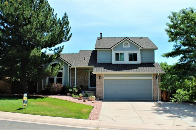 6446 S Pierce Court, Littleton, CO 80123 (#8795021) :: Arnie Stein Team | RE/MAX Masters Millennium