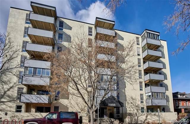 1255 N Ogden Street #205, Denver, CO 80218 (#8796490) :: milehimodern