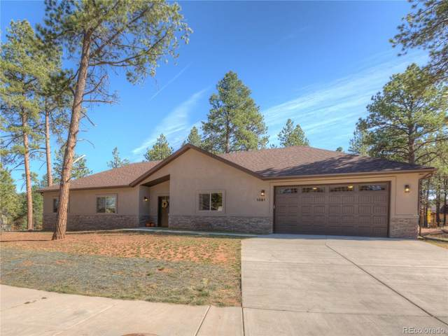 1351 Ridgestone Drive, Woodland Park, CO 80863 (#8798733) :: HomeSmart Realty Group