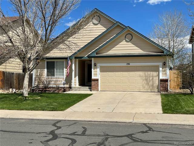 236 Cherry Street, Castle Rock, CO 80104 (MLS #8799162) :: Stephanie Kolesar