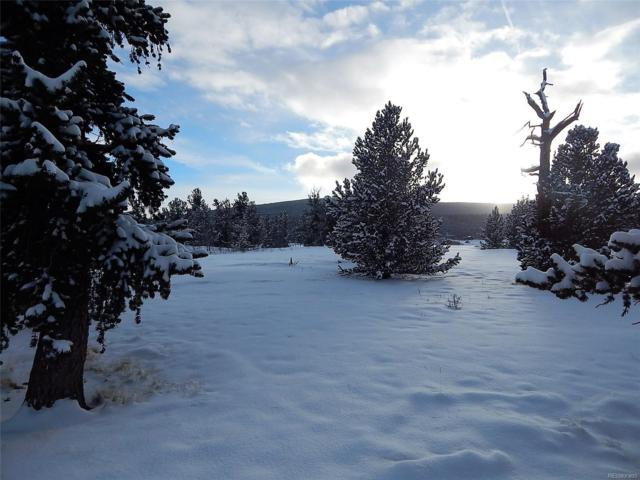 1688 Mullenville Road, Fairplay, CO 80440 (MLS #8799737) :: Kittle Real Estate