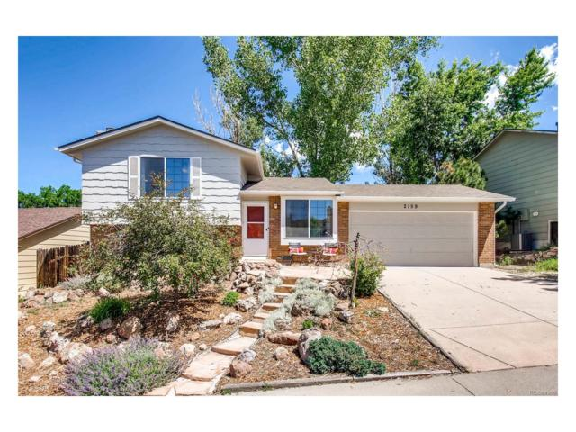 2159 Beacham Drive, Castle Rock, CO 80104 (#8803797) :: The Griffith Home Team