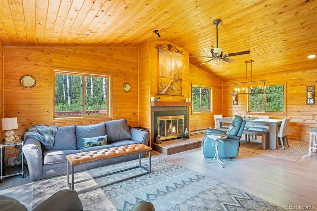 24280 & 24380 Meadow Road, Clark, CO 80487 (#8810414) :: Berkshire Hathaway HomeServices Innovative Real Estate