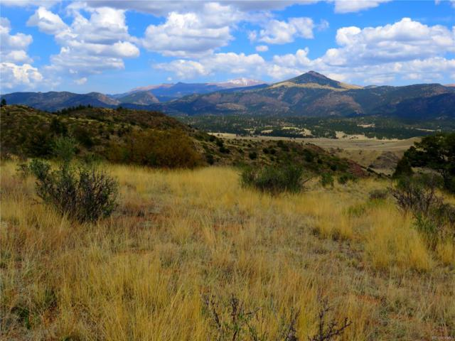 1537 Apache Trail, Florissant, CO 80816 (MLS #8813946) :: 8z Real Estate