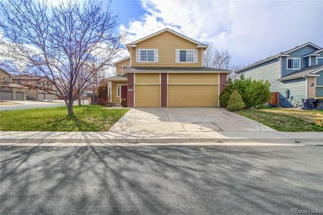 901 Fairhaven Street, Castle Rock, CO 80104 (#8814163) :: The Harling Team @ Homesmart Realty Group