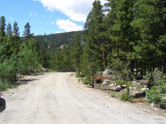 Lot 19 Pooh Corner Road, Idaho Springs, CO 80452 (MLS #8820389) :: 8z Real Estate