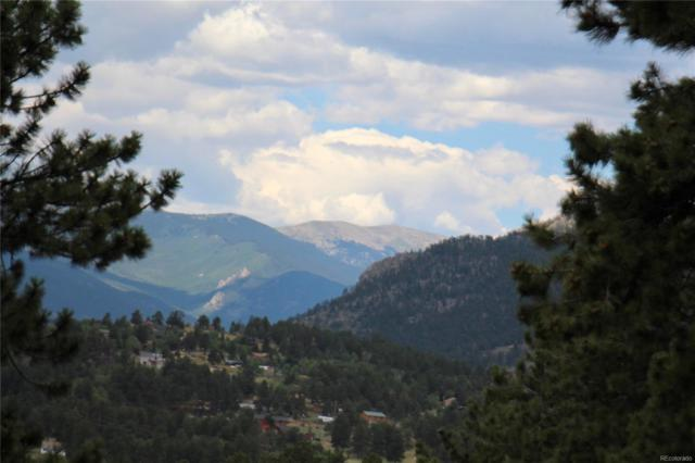 630 Dick Mountain Drive, Bailey, CO 80421 (#8820612) :: HomePopper