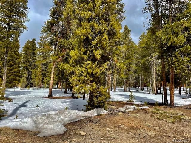 428 Augusta Drive, Leadville, CO 80461 (MLS #8821684) :: Find Colorado