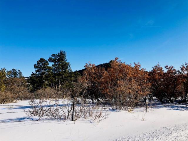 0 Columbine Road, Palmer Lake, CO 80133 (#8822343) :: Harling Real Estate