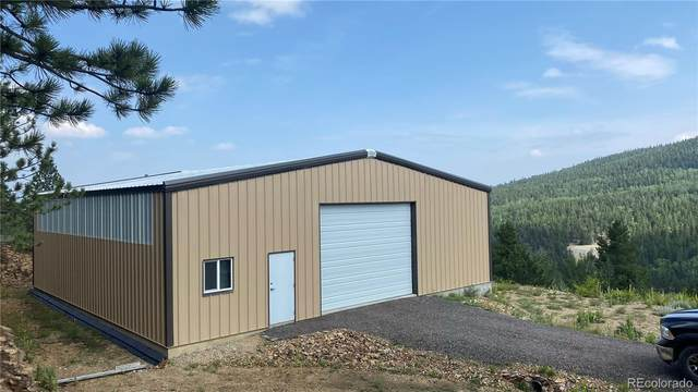 6660 Virginia Canyon Road, Central City, CO 80427 (#8825342) :: Berkshire Hathaway HomeServices Innovative Real Estate